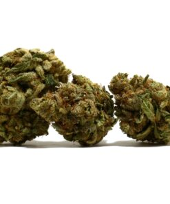 buy Holy Grail Strain