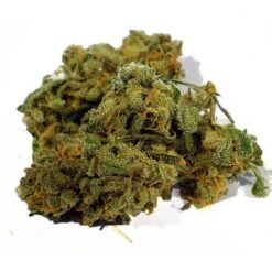 blue cheese strain - buy cheese online-best cheese-cheese shops near me