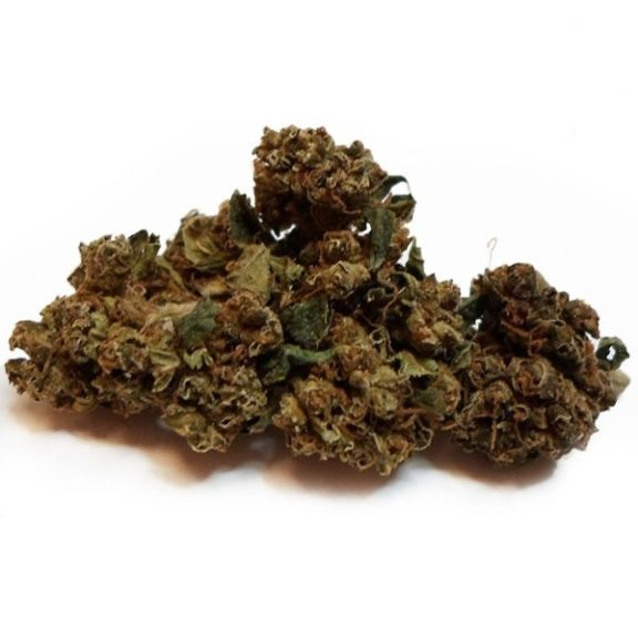 marijuana ,dank ,lifeinism,bud ,ganja ,hrbnlife ,Stonerdays ,HighLife ,GreenLife ,Instaweed ,Lifted ,maryjane ,HighTimes ,herblife ,Cmoneys420hunnie ,tagsforhearts ,Bluntculture ,LoudOnly ,PiercedPotHead ,pothead ,KushArmy ,ilsc420 ,medical ,420 ,greenlife ,instaweed ,w420 ,weedporn ,710 ,dabaholic wakenbake, smokepot ,smokeweed ,stoner ,StonerFam ,stonercouples ,stayhigh ,weed ,weedsociety ,cannabis ,CannaFam ,gethigh ,ganja ,ganjalife ,hsc ,high ,joints ,blunts ,marijuana ,pothead ,recreational ,anxiety,buy Holy Grail,420 mail order, afghan kush flowering time, afghan kush grow, afghan kush pictures, afghan kush price, afghan kush seeds, Afghan Kush Strain, afghan kush wiki, afghan strain, afghani strain flowering time, BHO, Blackberry kush, Blue Dream, buy edibles online reddit, buy legal weed online, Buy marijuana online, Buy real marijuana online, Buy real weed online, buy skunk online uk, Buy synthetic weed online, Buy weed online, Buying weed online, Can you buy weed online, dispensaries that ship out of state, Girl Scout Cookies, Green crack, is it legal to buy edibles online, Khalifa Kush, kush for sale, legal buds, Mail order marijuana, Marijuana clones for sale, Marijuana for sale, Marijuana for sale online, MMJ, OG kush, online dispensary edibles, online dispensary shipping, Order weed online, Weed for sale online