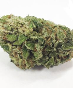 Buy lemon thai kush