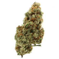 Buy pennywise strain online