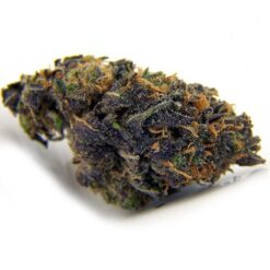 purple kush strain - buy purple og kush strain- purple kush