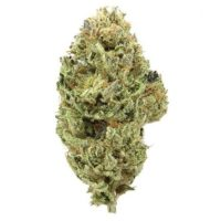 buy Sour tsunami, 420 mail order, afghan kush flowering time, afghan kush grow, afghan kush pictures, afghan kush price, afghan kush seeds, Afghan Kush Strain, afghan kush wiki, afghan strain, afghani strain flowering time, BHO, Blackberry kush, Blue Dream, buy edibles online reddit, buy legal weed online, Buy marijuana online, Buy real marijuana online, Buy real weed online, buy skunk online uk, Buy synthetic weed online, Buy weed online, Buying weed online, Can you buy weed online, dispensaries that ship out of state, Girl Scout Cookies, Green crack, is it legal to buy edibles online, Khalifa Kush, kush for sale, legal buds, Mail order marijuana, Marijuana clones for sale, Marijuana for sale, Marijuana for sale online, MMJ, OG kush, online dispensary edibles, online dispensary shipping, Order weed online, Weed for sale online