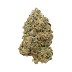 G13 for sale - highlifeganja