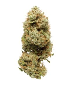 Buy strawberry banana strain