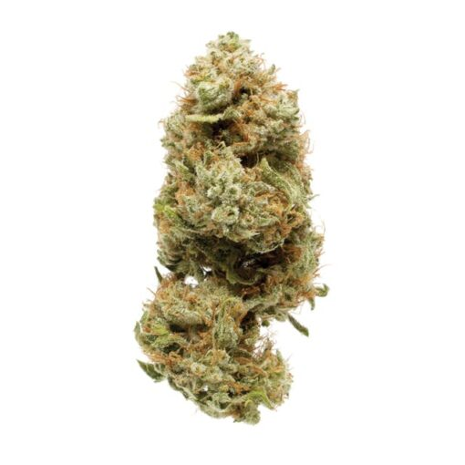 Strawberry Banana (Hybrid)