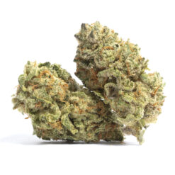 super skunk strain , buy super skunk strain