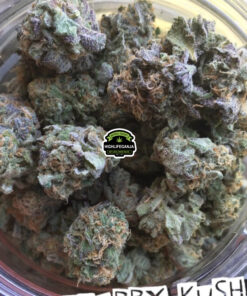 blackberry kush weed strain