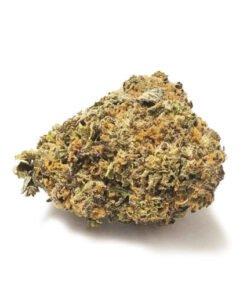 Buy-CANDIDA-CD-1-weed-510x510 (1)